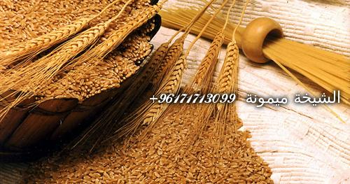 wheat germ1