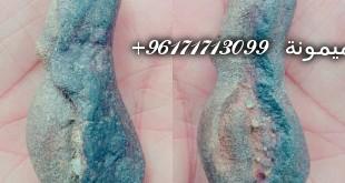 17661958_1686488264987553_1737437760131694592_n