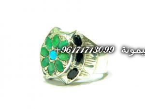 DSCN0638-300x225