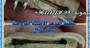 20347028_1458334267546844_8338741664461881344_n