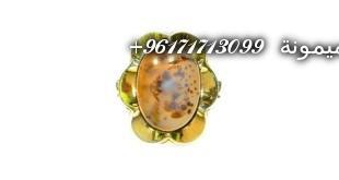 DSCN3564-768x576