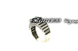 DSCN4221-400x300